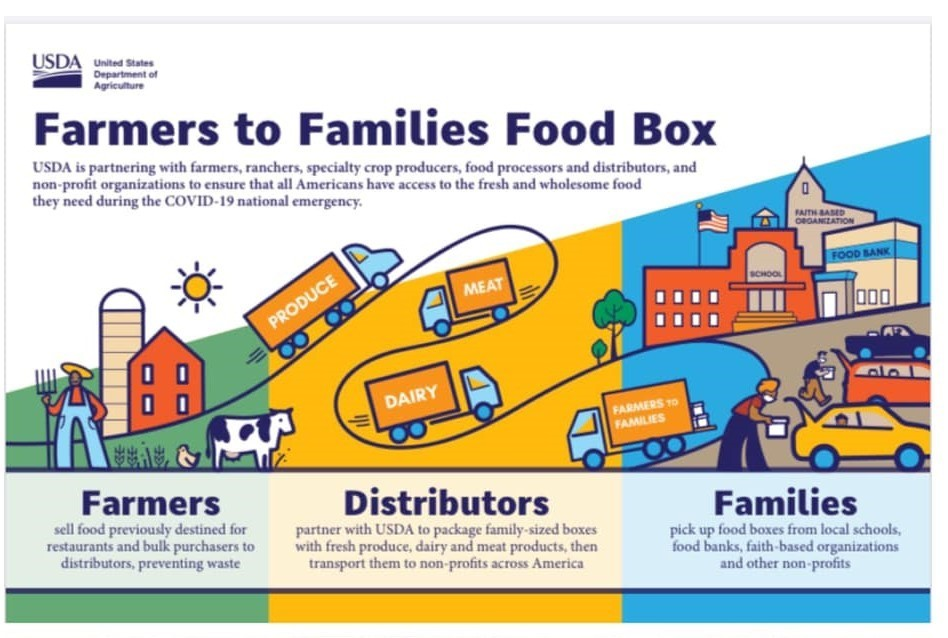 Farm to Families Food Box Flyer